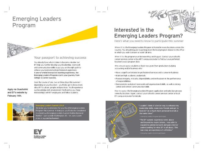 Emerging Leaders Program_EY